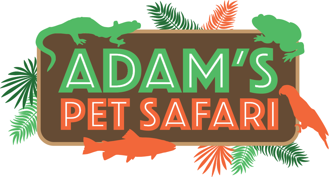 Adam's Pet Safari